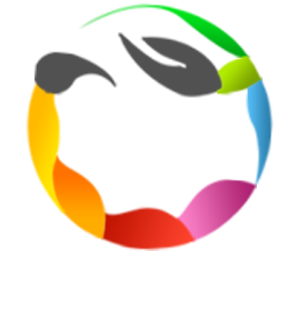 Crazy Web Studio Ltd. All rights reserved 2015
